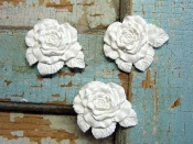 Baby Roses (set of 3)